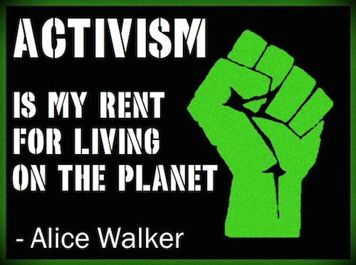 Activism-quote-by-Alice-Walker